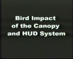 Birdstrike on Canopy and HUD System