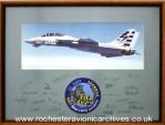 F-14 DFCS