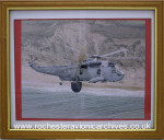 Sea King  (AEW).