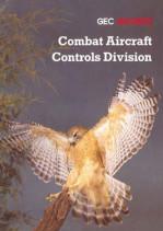 Combat Aircraft Controls Division