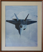 F-22 In Flight