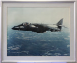AV8/B Night Attack (Harrier)